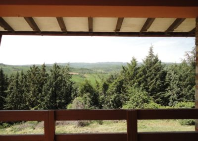 Louvet-Group-International-Real-Estate-Monte-Castello-di-Vibio-Italy-3