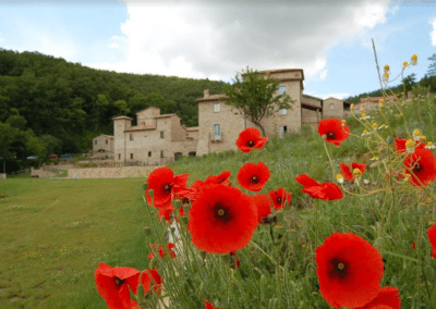 Louvet-Group-International-Real-Estate-Palatial-Complex-in-Allerona-Italy-2